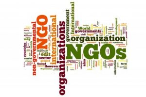 NGOs and cosmetics